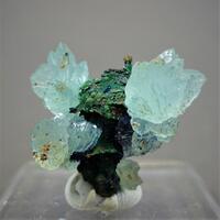 Aragonite Adamite Azurite On Psm Goethite