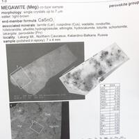 Megawite